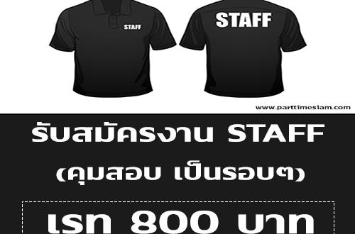 รับสมัครงาน STAFF (คุมสอบเป็นรอบๆ) เรท 800 บาท
