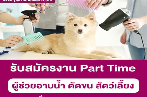 งาน Part Time ผู้ช่วยอาบน้ำ ตัดขน สัตว์เลี้ยง