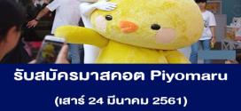 รับสมัครคนใส่ชุดมาสคอต Piyomaru (เรท 1,500 บาท++)