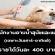 งาน Part Time อาบน้ำสุนัขและแมว (เฉพาะเสาร์-อาทิตย์)