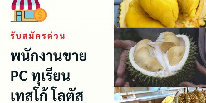 Tesco Lotusรับสมัครพนักงานขายผลไม้ (วันละ 350-450 บาท)