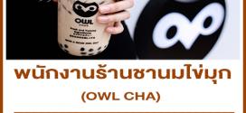 รับสมัครพนักงานร้านชานมไข่มุก OWL CHA