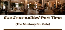 พนักงานเสิร์ฟ (Part Time) ประจำร้าน The Mustang Blu Cafe