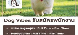 งาน Part Time ร้านคาเฟ่สุนัข Dog Vibes